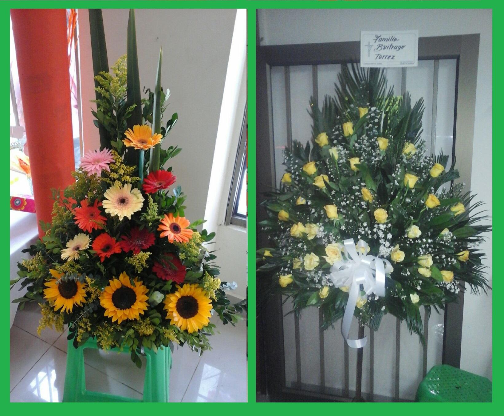 Portal Floral Amarillas De Colombia Co El Directorio